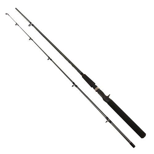 Shimano FX 7'0 M Freshwater Casting Fishing...