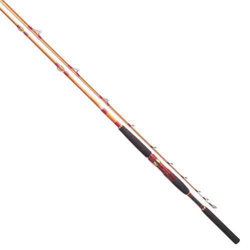 Tica BILD Kayak Fishing Rod