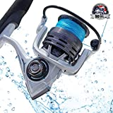 CS4 Spinning Reel,Cadence Ultralight & Fast...