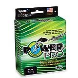 Power Pro Spectra Fiber Braided Fishing Line, Moss...
