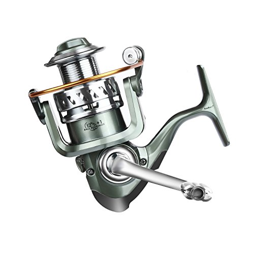 10 Best Spinning Reel Under 50 Options Ranked Along With a