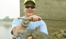 best catfish rod for the money