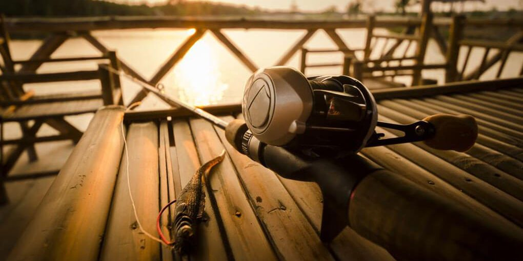 Best Baitcasting Reel for Northern Pike