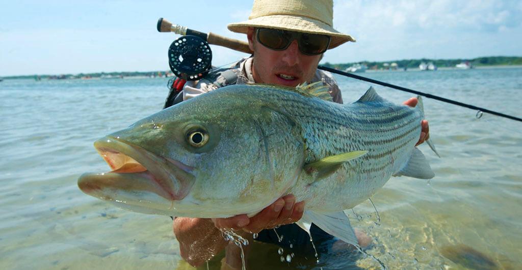Best Rod for Striper Fishing
