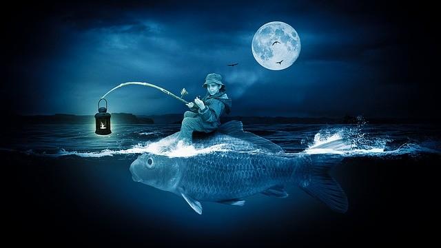 Night Fishing Tips Saltwater