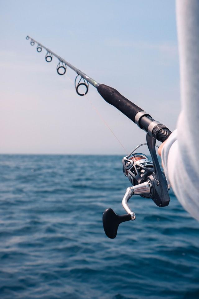 Where To Catch Flounder